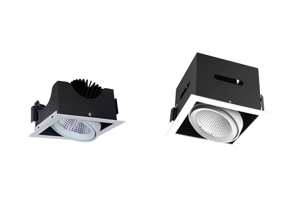 adjustable downlighters Cardan